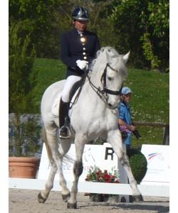 Veste Equitation PLR - Europa